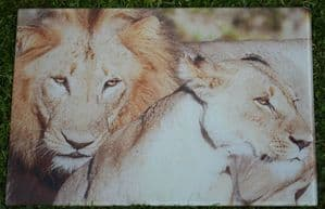 Lions Glass Chopping Board Large Size Toughened Glass