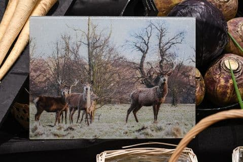Red Deer and Stags Glass Chopping Board Large Size Toughened Glass