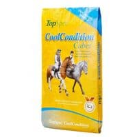TopSpec CoolConditioning Cubes 20kg