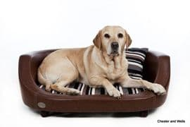 Chester & Wells Oxford ll Leather Dog Bed, Black/Chestnut