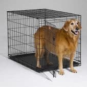 Dog Crates and Kennels