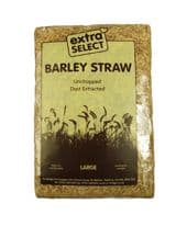 Extra Select Compressed Barley Straw