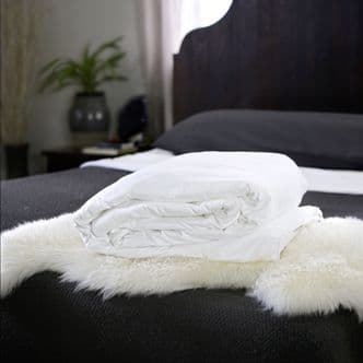 Continental Queen Mulberry Silk-Filled Duvets - Pure Luxury
