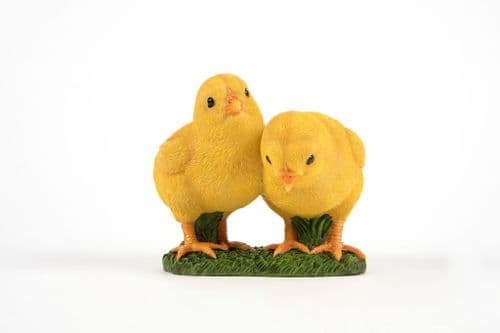 Two Chicks