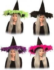 Witch Hat With Feather Trim