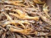 Chicken Feet 10kg - 500-1000 pieces