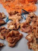 Pork Crunch 10kg (inner ear)