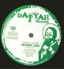 "Anthony John - Troding Troding / Troding Dub / Calm Before The Storm / Bad Weather Storm 10"" DA1YAH"