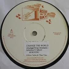 Kingsley Wray Skycru - Change the world / Demonstration 10