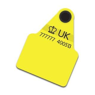 Large Flag Cattle Tag w/ Management Space (Replacement)